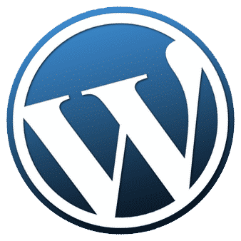 wordpress support when you need it