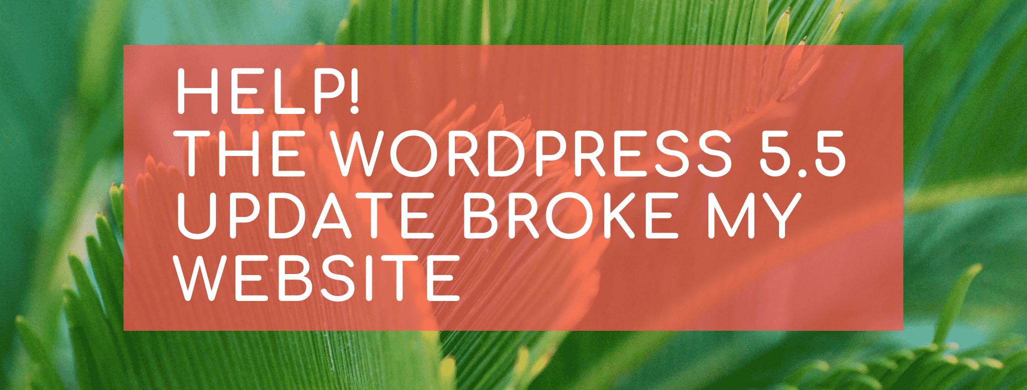 Help WP 5.5 broke my site