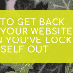 How to get back into your website when you're locked out